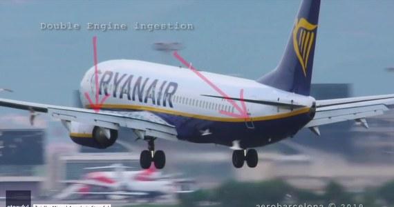 Samolot linii Ryanair podchodzący do lądowania w Barcelonie napotkał na stado mew latających tuż nad pasem. Na szczęście nie spowodowało to zagrożenia dla pasażerów. Świadkowie oszacowali, że zginęło około 20 ptaków, które uderzyły w skrzydła lub zostały wciągnięte przez silniki odrzutowe. Sprzątanie pasa zajęło ponad godzinę, przez ten czas cały ruch na zatłoczonym lotnisku musiał obsłużyć drugi pas startowy.