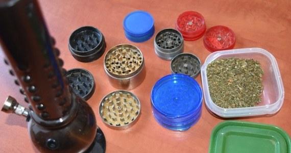 Policjanci ze Śremu (wielkopolskie) przyjechali do mieszkania 18-latka, by zatrzymać jego znajomego, który włamywał się do piwnic. Zamiast niego - znaleźli ukryte pod wanną narkotyki i 6 młynków do mielenia suszu marihuany.