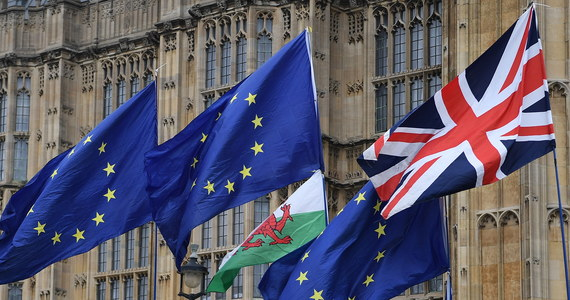 Unia Europejska zgodzi się na przedłużenie brexitu. Będzie jednak żądała określenia, czemu ta zgoda ma służyć - to konkluzja ze spotkania unijnych ministrów ds. europejskich 27 krajów członkowskich. Nie jest jasne, o ile wyjście Wielkiej Brytanii miałoby być odłożone.