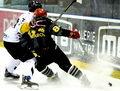PHL. GKS Tychy - Comarch Cracovia 4-2. Kalinowski: To nie koniec