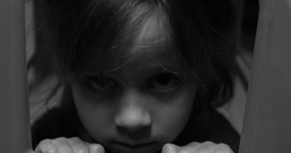 Prokuratura Rejonowa w Tychach skierowała do sądu akt oskarżenia przeciwko mężczyźnie, który - będąc czynnym policjantem - miał wykorzystywać seksualnie 6-letnią koleżankę swojej córki.