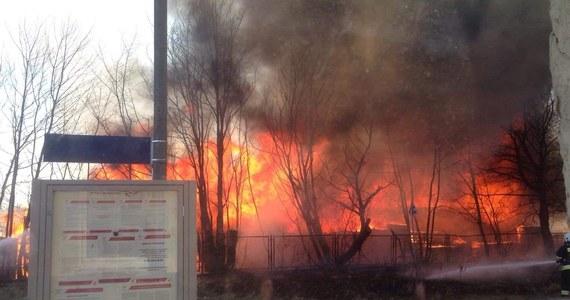 Opanowano pożar zakładu przetwórstwa drzewnego w Dziemianach koło Kościerzyny na Pomorzu. Z ogniem walczyły 24 zastępy straży pożarnej. W tej chwili największym zagrożeniem dla mieszkańców okolicy jest dym.