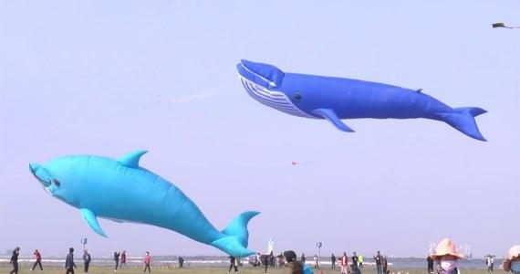 Ponad 10 tys. latawców zaprezentowano podczas uroczystości otwarcia 36. międzynarodowego festiwalu latawcowego w Weifang na zachodzie Chin. W konkursie brało udział ponad 800 drużyn z 60 krajów.