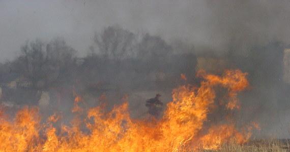 Od Wielkiej Soboty do Wielkanocnego Poniedziałku doszło do ponad 3,5 tysiąca pożarów, w których zginęło 8 osób, a 59 zostało rannych. Strażacy podjęli ponad 5,2 tys. interwencji. W okresie wielkanocnym wybuchło 467 pożarów w lasach; trawy i nieużytki paliły się ponad 1 822 razy.