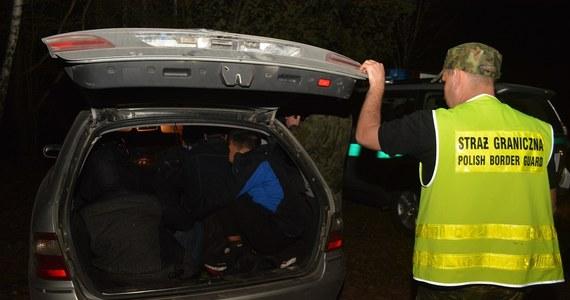 Dziesięciu Wietnamczyków nielegalnie przebywających w Polsce zatrzymała Straż Graniczna w okolicach Sejn na Suwalszczyźnie. Trwają poszukiwana kierowcy auta, którym cudzoziemcy byli przewożeni.
