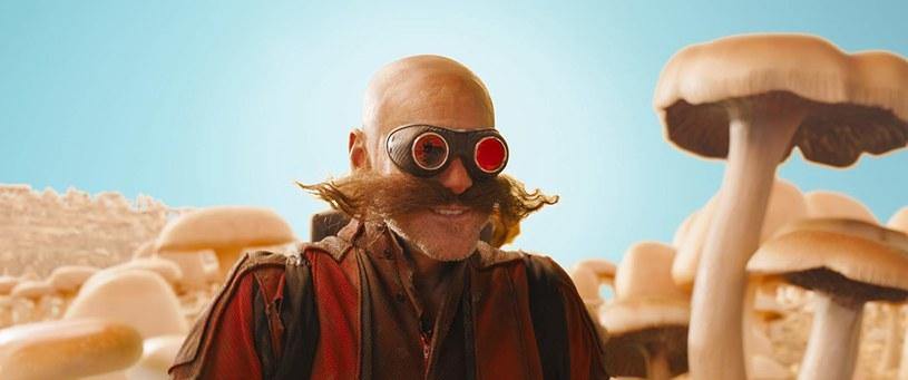 """Niedawno odbyła się światowa premiera trailera adaptacji popularnej gry wideo """"Jeż Sonic"""". Fani niebieskiego zwierzaka, który potrafi biegać z zawrotną prędkością, nie byli (delikatnie mówiąc) z niego zadowoleni. Po fali krytyki reżyser zdecydował się na bardzo odważny krok."""