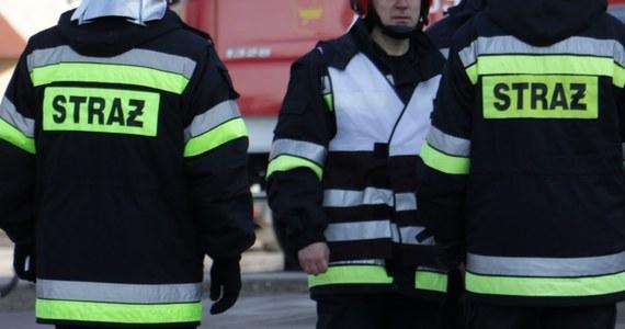 W długi weekend majowy w Polsce wybuchło ponad 2 tysiące pożarów, w których zginęło 7 osób, a 37 zostało rannych. Od 1 do 5 maja łącznie strażacy interweniowali ponad 5 tysięcy razy - poinformował rzecznik komendanta głównego Państwowej Straży Pożarnej st. bryg. Paweł Frątczak.