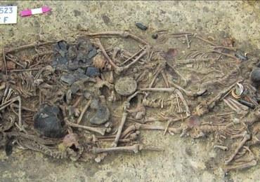Odkryto tajemnicę neolitycznej zbrodni z terenu Polski