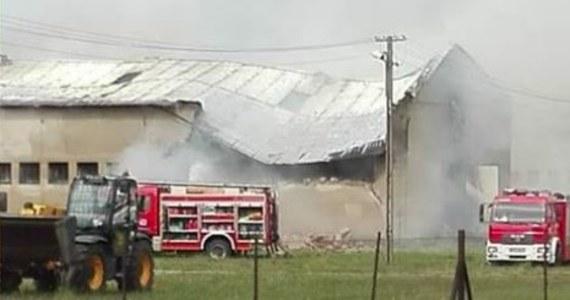 Ogromny pożar w hodowli owiec w Pianowie koło Kościana w Wielkopolsce. Z ogniem na miejscu walczy ponad 20 strażackich zastępów.