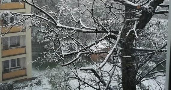Po nocnych opadach w Zakopanem zalega kilka centymetrów śniegu i cały czas go przybywa. W Tatrach obowiązuje zagrożenie lawinowe pierwszego stopnia. Zdjęcia z zaśnieżonego Zakopanego dostaliśmy na Gorącą Linię RMF FM.