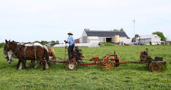Amerykańscy farmerzy są pierwszymi ofiarami wojny handlowej, jaką Waszyngton prowadzi z Pekinem. Cła wprowadzone wzajemnie przez strony konfliktu grożą amerykańskim farmerom utratą podstawowego rynku zbytu, jakim dla nich są Chiny.
