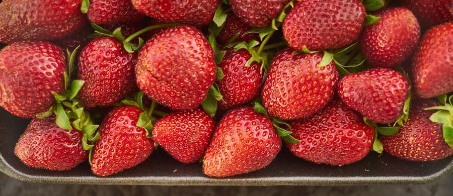 Wiosna i lato to pory roku, kiedy możemy w pełni cieszyć się z dobrodziejstw natury. To właśnie w tym czasie na naszych stołach goszczą uwielbiane przez wszystkich owoce: truskawki, czereśnie i maliny.