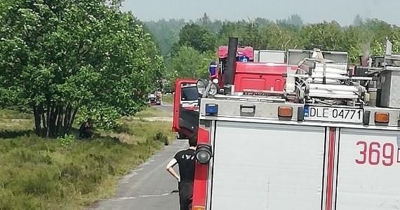 Pożar na terenie ośrodka szkolenia poligonowego wojsk lądowych w miejscowości Dobre nad Kwisą. Z ogniem walczy już kilkadziesiąt zastępów straży pożarnej.