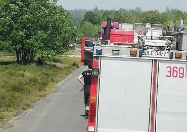 Pożar na poligonie wojskowym w miejscowości Dobre nad Kwisą