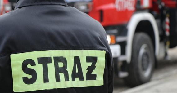 Płonie 20 hektarów lasu w Myślakowicach na Mazowszu. Z ogniem walczy prawie 100 strażaków.