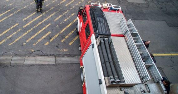 Siedem osób zostało rannych, gdy wiozący uczniów autobus na polskich tablicach rejestracyjnych wjechał do rowu na autostradzie M3 na Węgrzech - poinformowała agencja MTI.