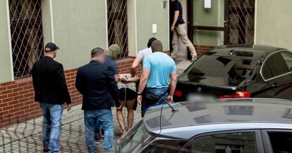 Prokuratura w Świdnicy postawiła w sumie dwa zarzuty 22-latkowi podejrzanemu o zabójstwo 10-letniej Kristiny w Mrowinach. Pierwszy dotyczy zabójstwa ze szczególnym okrucieństwem, w tym znieważenia zwłok. Drugi dotyczy podżegania innej osoby do udziału w zabójstwie. Prokuratura skierowała do sądu wniosek o areszt dla 22-latka.