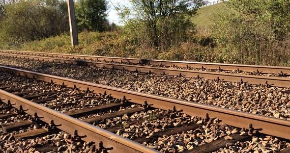 Pociąg wiozący kruszywo wykoleił się w środę na trasie pomiędzy Suwałkami a Augustowem (Podlaskie). Ruch w tym miejscu jest wstrzymany – informują PKP Polskie Linie Kolejowe.