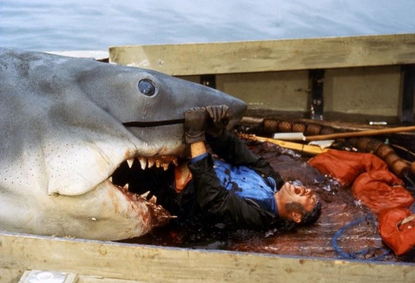 """Lato 1975 roku było upalne, ale nagle wielu Amerykanów zaczęło rezygnować z kąpieli w oceanie. Powód? 20 czerwca premierę w kinach miał film Stevena Spielberga """"Szczęki"""". Bohaterem był rekin ludojad i wiele osób przeraziło się nie na żarty..."""