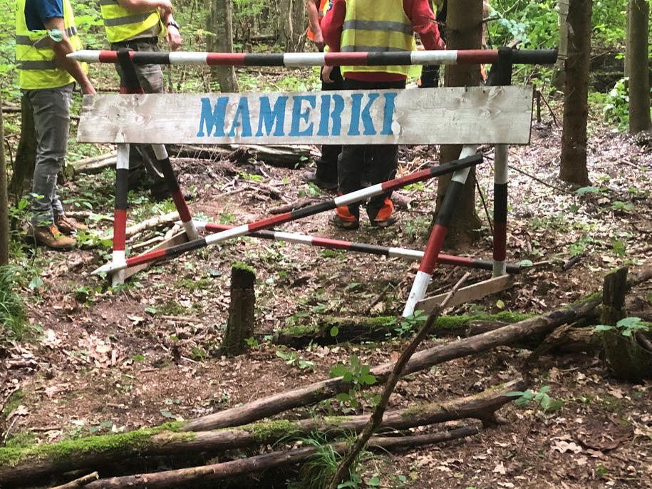 /Piotr Bułakowski /RMF FM