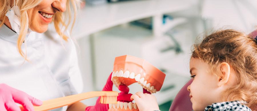 Zęby mleczne wymagają odpowiedniej higieny i kontroli dentystycznych. Należy je utrzymać w jak najlepszym stanie, aż do ich naturalnej wymiany. Jest to bardzo ważne dla dobra późniejszego, uzębienia stałego. Jeśli zastanawiasz się kiedy po raz pierwszy zabrać swoje dziecko do stomatologa podpowiadamy. Nasza ekspertka ortodontka dr Kamila Wasiluk, tłumaczy, że podczas kontroli mały pacjent oswaja się z gabinetem i dentystą, a dla opiekunów jest to moment na rozmowę z lekarzem, który powinien wyjaśnić im kwestie związane z uzębieniem mlecznym.