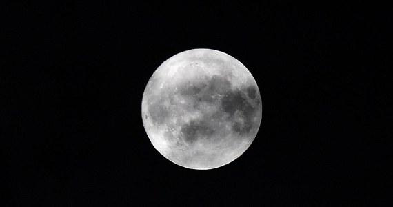 Rosja zamierza wykorzystać do zbadania Księżyca roboty posiadające sztuczną inteligencję. Program zaplanowano na najbliższe 20 lat.