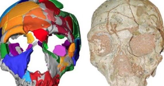 """Nasi przodkowie mogli wyjść z Afryki ponad 150 tysięcy lat wcześniej, niż do tej pory przypuszczaliśmy. Przekonują o tym najnowsze badania czaszek, znalezionych w greckiej jaskini jeszcze w latach 70. ubiegłego stulecia. Wtedy uznano je za szczątki neandertalczyków, teraz okazuje się, że jedna z nich należała już prawdopodobnie do przedstawiciela Homo sapiens. Międzynarodowy zespół naukowców, pod kierunkiem badaczy z Tybingi i Aten, pisze o tym w najnowszym numerze czasopisma """"Nature""""."""