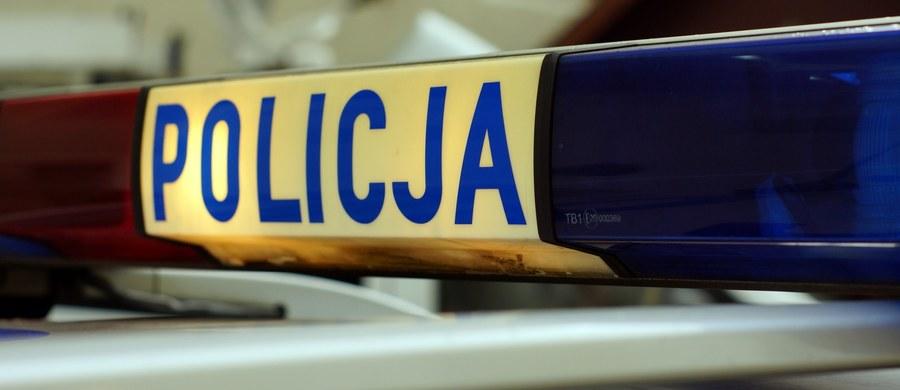 Sześć osób zostało rannych w wypadku w Pląchotach koło Golubia-Dobrzynia (woj. kujawsko-pomorskie). Na drodze krajowej nr 15 zderzyły się tam dwa samochody osobowe.