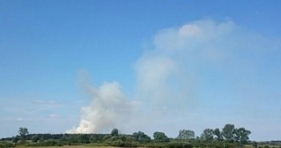Straż pożarna walczy z pożarem w Pomarzanowicach w powiecie poznańskim. Płoną tam nieużytki.