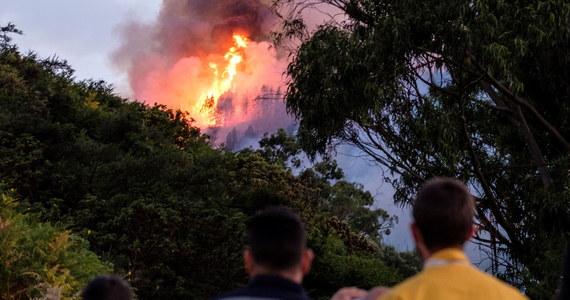 Ponad 2000 osób ewakuowano na popularnej wśród turystów hiszpańskiej wyspie Gran Canaria z powodu pożaru lasów na górzystym, trudno dostępnym obszarze 15 km na południowy zachód od Las Palmas - podała w niedzielę agencja dpa za lokalnymi służbami ratunkowymi.