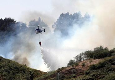Największy od lat kataklizm w Hiszpanii. Katastrofalny bilans pożarów na Gran Canarii