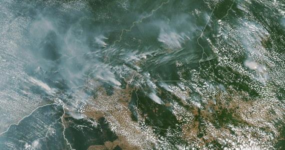 Dramatyczna sytuacja w lasach Amazonii. Według państwowego instytutu badań INPE w porównaniu z tym samym okresem w 2019 roku liczba pożarów wzrosła o 84 procent. Dym widać nawet na zdjęciach satelitarnych.