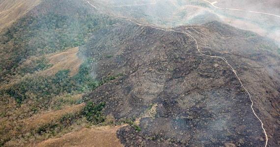 Brazylijskie wojsko wyraża gotowość do walki z rekordową liczbą pożarów w Amazonii - poinformował szef armii Edson Leal Pujol. Taką możliwość, w związku z rosnącą presją międzynarodową, rozważa także prezydent Brazylii Jair Bolsonaro.