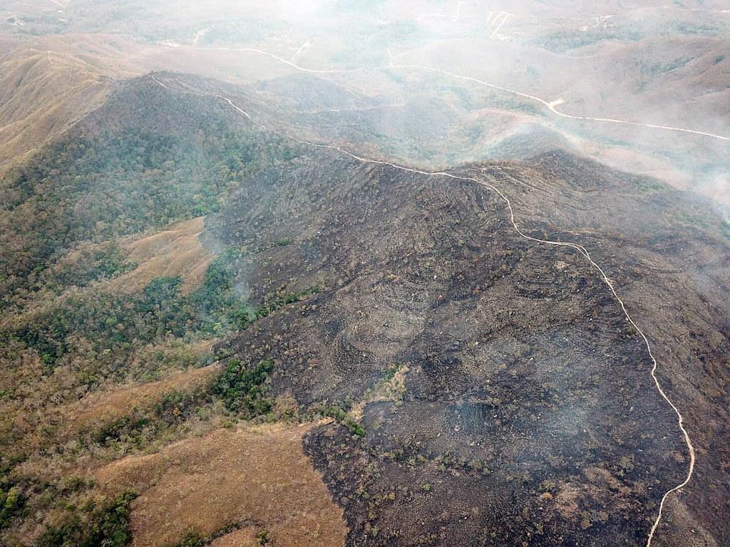 PAP/EPA/MATO GROSSO FIREFIGHTERS HANDOUT