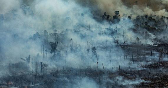 W Brazylii do walki z pożarami lasów w Amazonii oddelegowano lotnictwo wojskowe i 44 tys. żołnierzy - podaje Associated Press. Media informują o kilkuset nowych ogniskach pożaru.