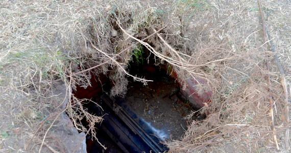 W parku w szczecińskim Dąbiu pod bawiącymi się dziećmi zapadła się ziemia. W powstałej dziurze znajdowały się dwie trumny - podaje serwis TVN24.