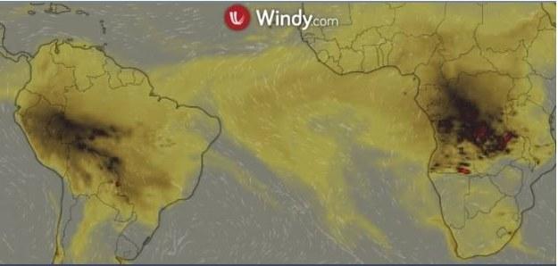 /www.windy.com /