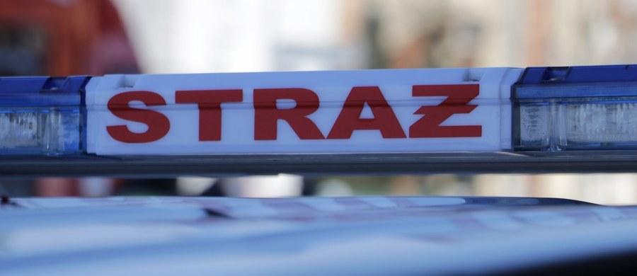 Samochód zjechał do Wisły z punktu widokowego w okolicy Kępy Bazarowej w Toruniu. Na szczęście w pojeździe nie było nikogo.
