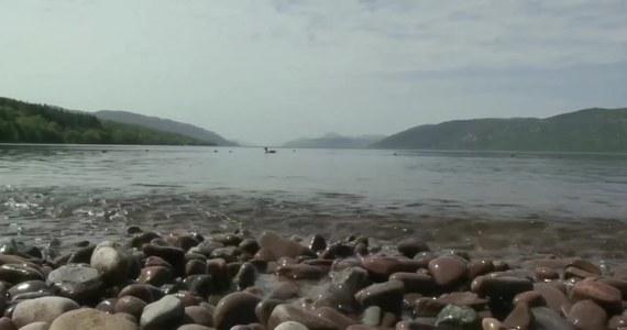 Poszukiwacze potwora z Loch Ness mogli przeżyć… potworny zawód. Nowozelandzcy naukowcy z Uniwersytetu Otago pobrali 250 próbek wody ze szkockiego jeziora, a następnie przebadali je na obecność sekwencji DNA gadów. Żadnych nie odnaleziono.