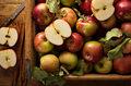 Jesień pachnie jabłkami