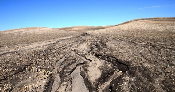 """Aktywność naszych dalekich przodków, a przede wszystkim rolnictwo, doprowadziło do istotnej erozji gleb już 4000 lat temu - przekonuje na łamach czasopisma """"Proceedings of the National Academy of Sciences"""" międzynarodowy zespół naukowców. Dowodem na to są wyniki badań osadów z dna kilkuset jezior na całym świecie, gdzie przetrwały ślady gromadzenia się pyłu i pyłków drzew. To dowód na to, że człowiek zauważalnie zmieniał środowisko Ziemi na długo przed epoką przemysłową."""