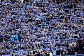 Bundesliga TSG 1899 Hoffenheim - SC Paderborn 07 3-0. Szybkie trzy bramki gospodarzy