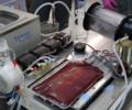 Polacy pracują nad przełomową terapią do walki z cukrzycą