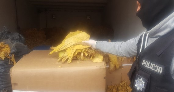 Policjanci ze Złotowa (Wielkopolskie) przejęli 3,5 tony liści tytoniu, które w swoim samochodzie przewoził 33-letni mieszkaniec Torunia. Mężczyzna został zatrzymany, grożą mu trzy lata więzienia.