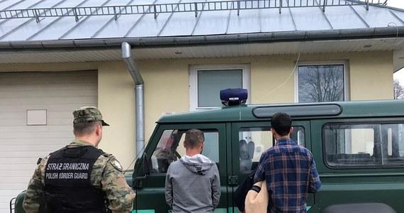 Dwaj obywatele Turcji i Albańczyk zostali zatrzymani przez funkcjonariuszy Nadbużańskiego Oddziału Straży Granicznej. Żeby dostać się do Polski, nielegalni imigranci przepłynęli Bug wpław.