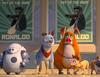 Zobacz trailer: Gang zwierzaków