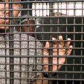 Od 1 września elektroniczny dozór nad więźniami