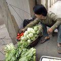 Warzywa droższe nawet o kilkadziesiąt procent!