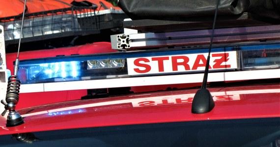 Zwęglone zwłoki mężczyzny znaleziono w spalonym aucie w mazowieckim Milanówku - dowiedział się reporter RMF FM.
