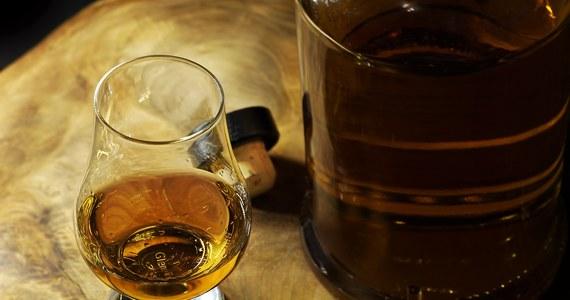 Największa na świecie butelka whisky sprzedana została na bożonarodzeniowej aukcji za 15 tys. funtów. Pochodzi ze szkockiej gorzelni w Tomintoul i wygląda imponująco. Właściciel butelki będzie miał jednak problem z jej obsługą. I nie chodzi wyłącznie o wlewanie trunku do szklanek.